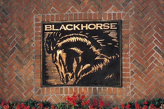 StudioConover - Brand Identity | Blackhorse Logo