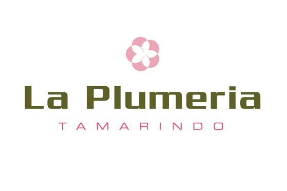 StudioConover - Brand Identity | La Plumeria Logo